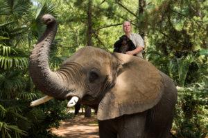 Doc Antle Riding Elephant