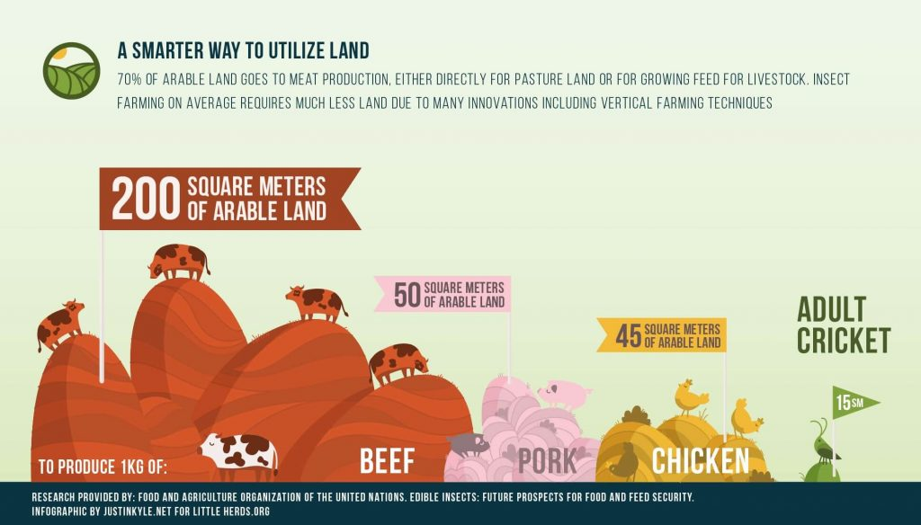 land usage animals agriculture