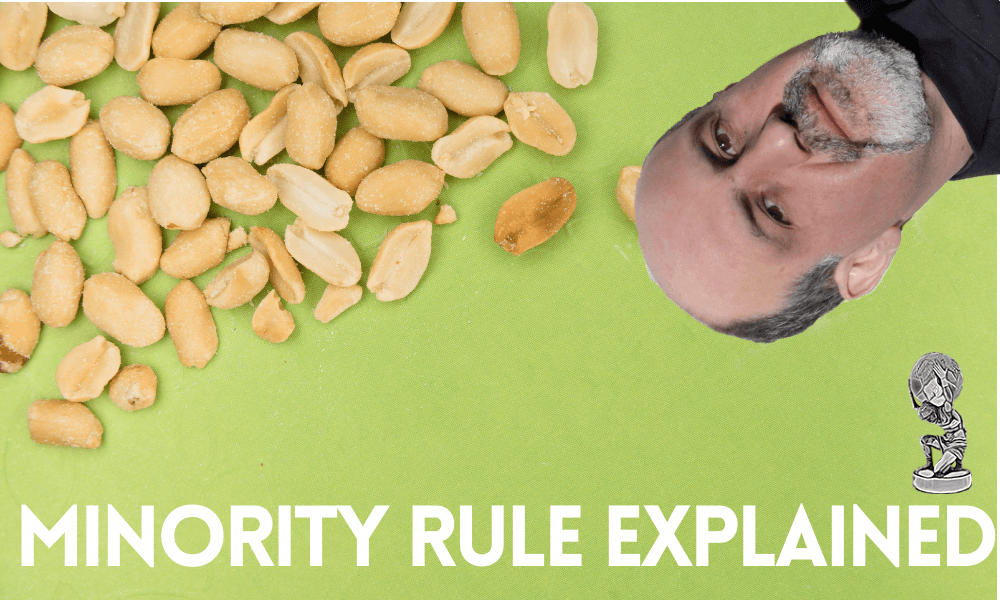the-minority-rule